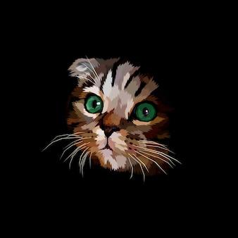 Scotish krotnie głową kota w ciemności