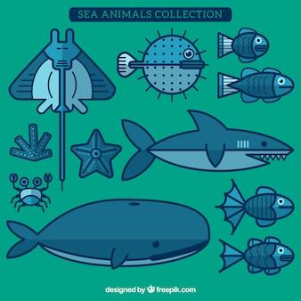 Sea animals collection w płaskiej konstrukcji