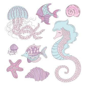 Sea animals underwater summer cruise