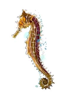 Sea horse z odrobiną akwareli, kolorowy rysunek, realistyczny. ilustracja wektorowa farb