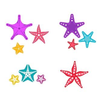 Sea star ikona ryby szablon wektor ilustracja projektu