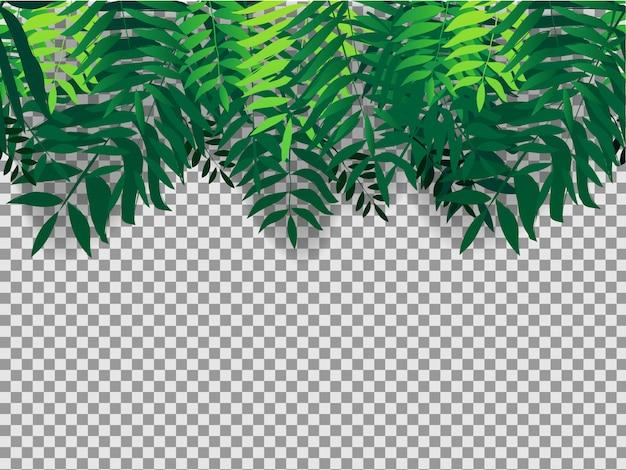 Seamles tło z tropikalnymi drzewami