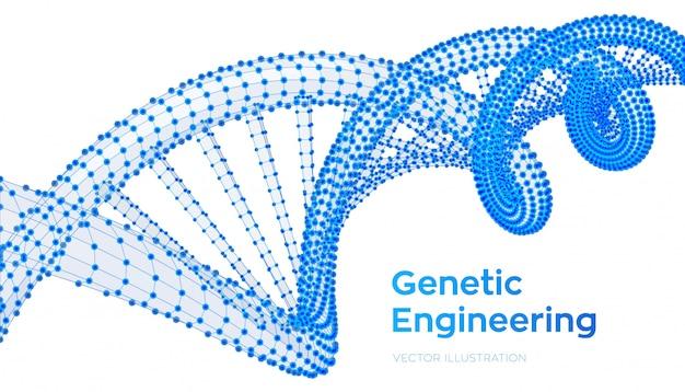 Sekwencja dna. struktura szkieletowa cząsteczek kodu dna struktura siatki.
