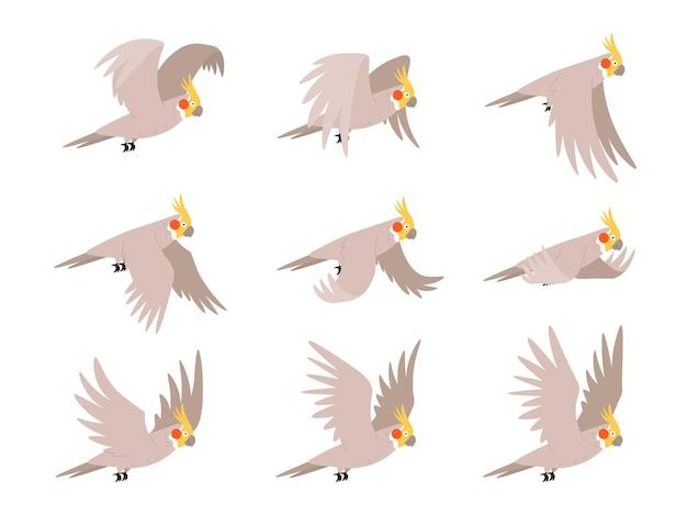 Sekwencja klatek animacji mucha papuga kakadu kreskówka. animowana pętla sprite'ów tropikalnych ptaków latających na niebie. cykl ruchu wektora skrzydła papugi. egzotyczny, uroczy lot postaci fauny
