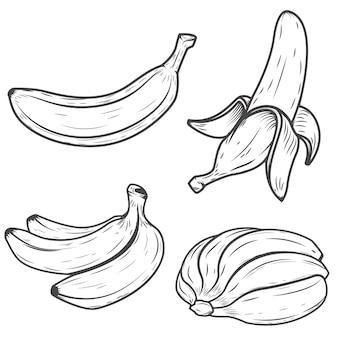 Set bananowe ikony na białym tle. elementy logo, etykiety, godło, znak, plakat. ilustracja.