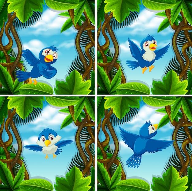 Set śliczny błękitny ptak w scenach