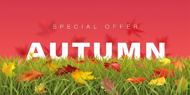 Sezon jesienny sprzedaż poziomy baner