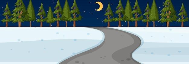 Sezon zimowy z drogą przez park w nocnej scenie poziomej