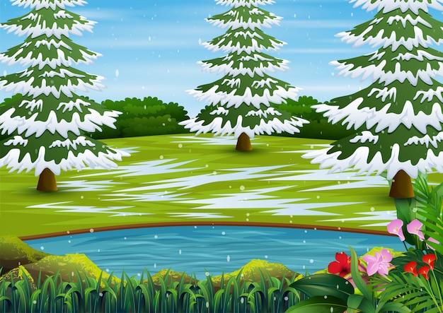 Sezon zimowy z ośnieżonymi drzewami i małym jeziorem