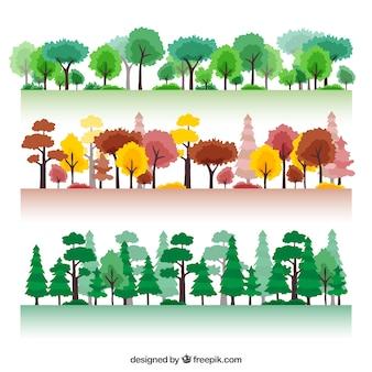 Sezonowy las