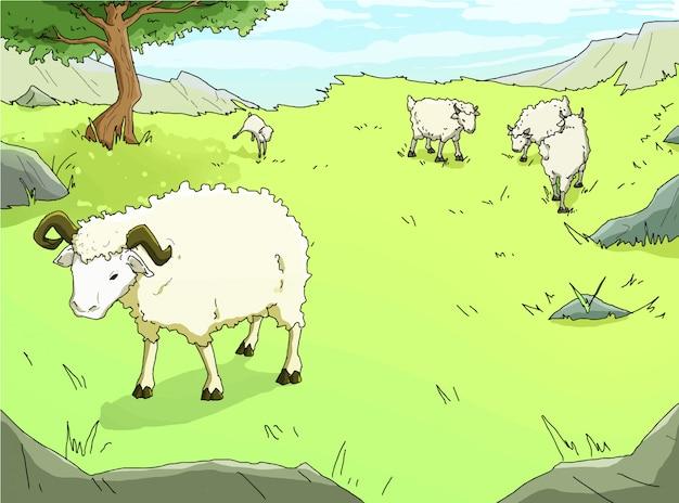 Sheeps w zielonej łące