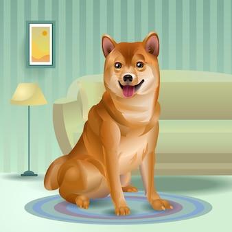 Shiba inu siedzi na dywanie. japoński pies w domu