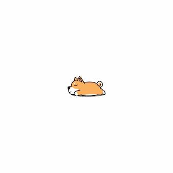Shiba inu szczeniak śpi