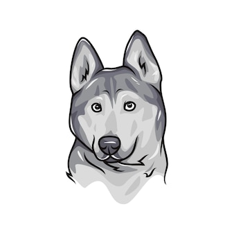 Siberian husky dog - wektor logo / ikona ilustracja maskotka