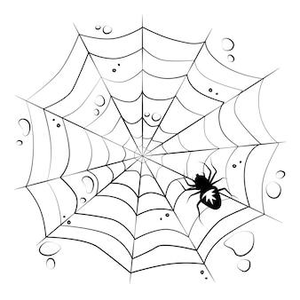 Sieć z pająkiem na białym tle na białym tle. elementy projektu halloween. przerażające, przerażające. wektor.