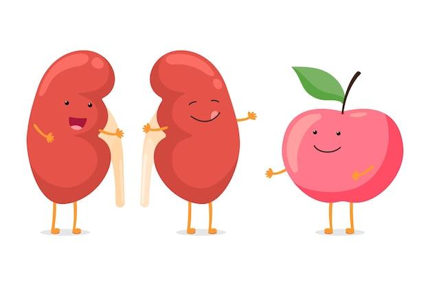 Silna zdrowa szczęśliwa nerka uśmiechnięta postać emocji z czerwonym jabłkiem anatomia człowieka układu moczowo-płciowego