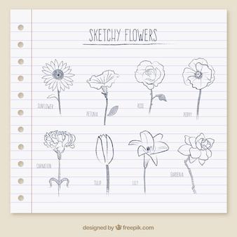 Sketchy kwiaty