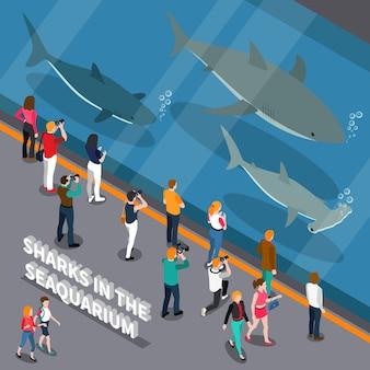 Skład izometryczny akwarium morskiego