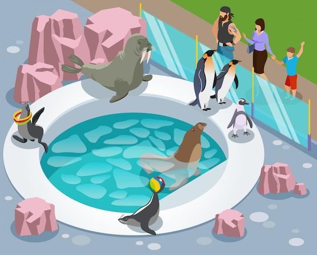 Skład izometryczny zoo