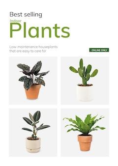 Sklep ogrodniczy szablon wektor najlepiej sprzedające się rośliny domowe