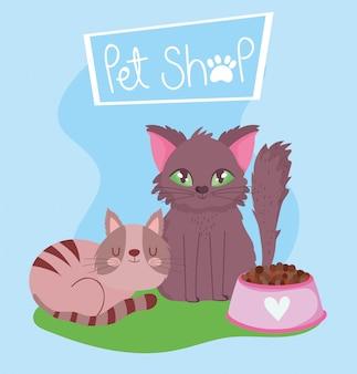 Sklep zoologiczny, futrzany kot i pręgowany kotek z miską żywności domowej kreskówki