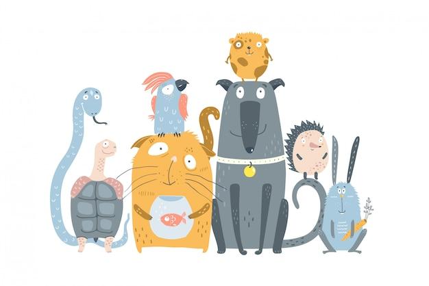 Sklep zoologiczny ze zwierzętami domowymi