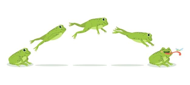 Skok żaby. różne sekwencje animacji skaczących żab, przeskakiwanie klatek kluczowych zielonej ropuchy, śmieszne zwierzęta wodne polujące na owady, zestaw kreskówek wektorowych.
