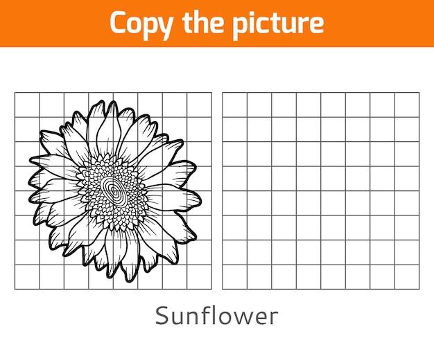 Skopiuj obrazek, gra edukacyjna dla dzieci, słonecznik