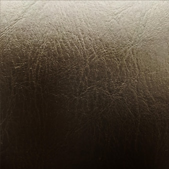 Skóra teksturowanej srebrnym tle.