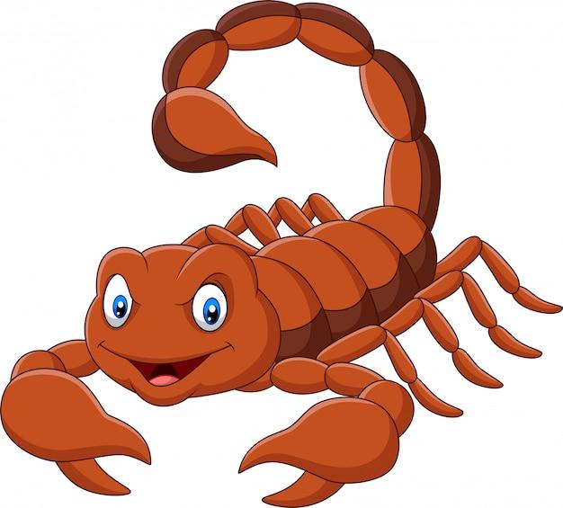 Skorpion kreskówka na białym tle