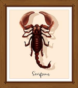 Skorpion na drewnianej ramie