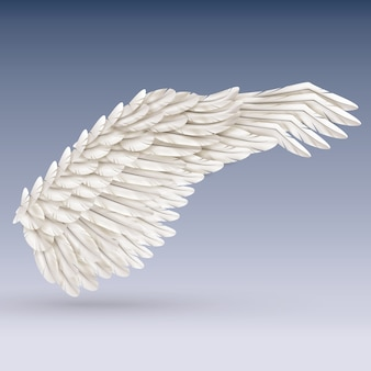 Skrzydło białego ptaka