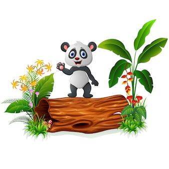 Śliczna dziecko panda pozuje na drzewnym bagażniku