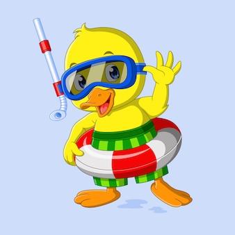 Śliczna kaczka jest gotowa do pływania