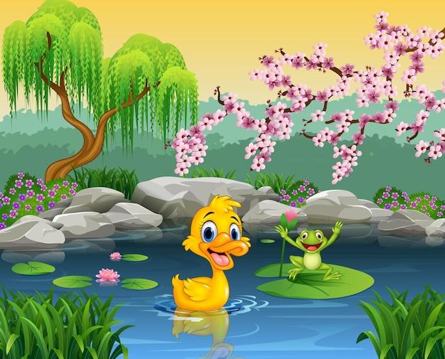 Śliczna kaczka z szczęśliwą żabą