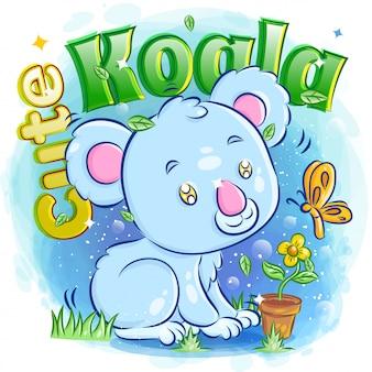 Śliczna koala bawić się z motylem