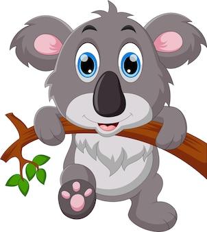 Śliczna koala kreskówka
