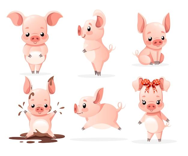 Śliczna kolekcja świń. postać z kreskówki . małe świnki w różnych pozach. czysto i błoto. ilustracja na białym tle