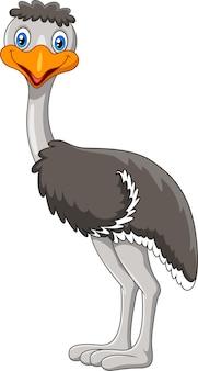 Śliczna kreskówka ptak emu
