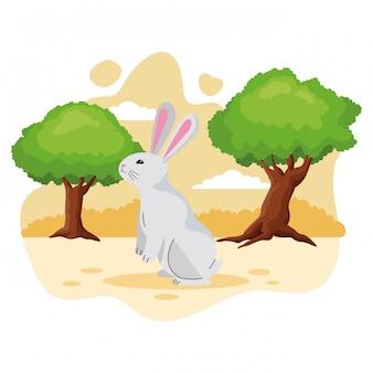 Śliczna królika zwierzęcia domowego zwierzęcia kreskówka