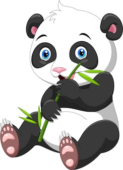 Śliczna mała panda z bambusem