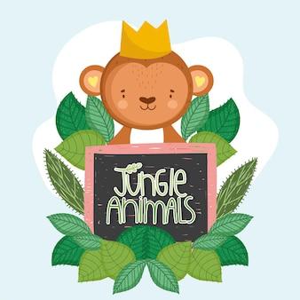Śliczna małpia dżungla