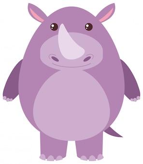 Śliczna nosorożec na białym tle