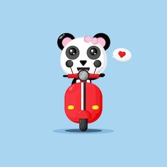 Śliczna panda jeździ na klasycznych motocyklach