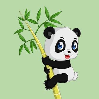 Śliczna panda na bambusowym drzewie