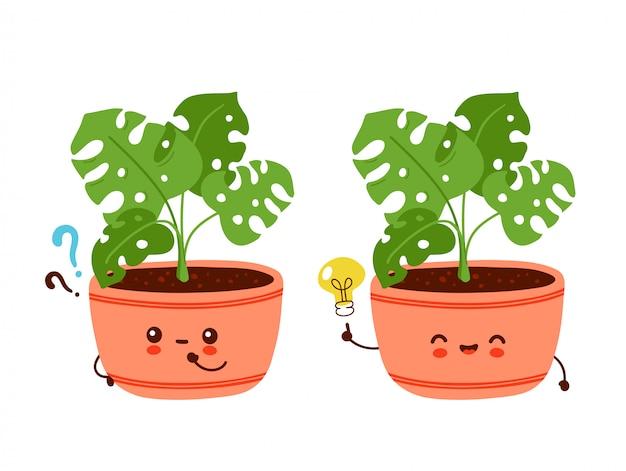 Śliczna szczęśliwa śmieszna monstera roślina w garnku z znakiem zapytania i pomysłu lightbulb. postać z kreskówki ilustracyjny ikona projekt. odosobniony