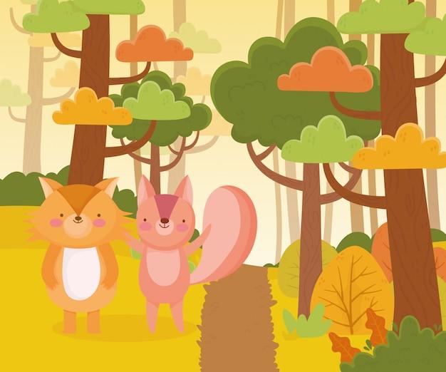 Śliczna wiewiórki i lisa ścieżki lasowych drzew natura
