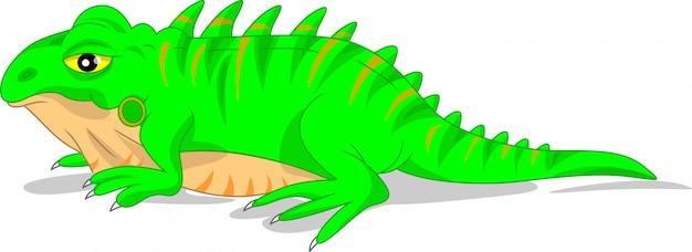 Śliczna zielona iguana jaszczurka