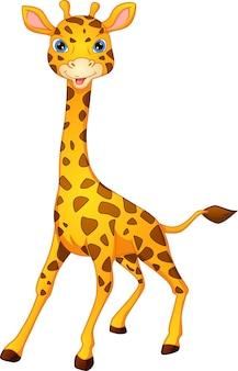 Śliczna żyrafa kreskówka na białym tle