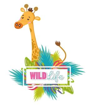 Śliczna żyrafy przyrody zwierzęcia kreskówka